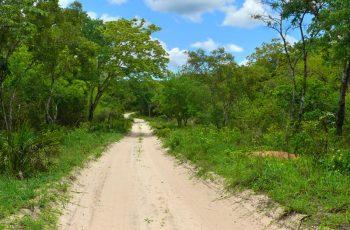 Central Mozambique