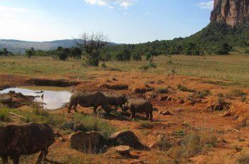 28 Night Zimbabwe, Botswana & Namibia Self-drive (Jnb-Cpt)