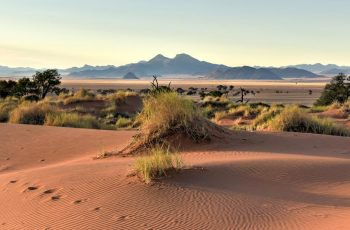 16 Night Namibia & Botswana Self-drive (Wdh-Vfa)